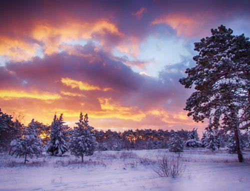 5 Tipps wie Du den Winter ohne Depressionen überstehst