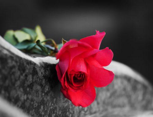 7 Dinge, die Du vor Deinem Tod beachten solltest